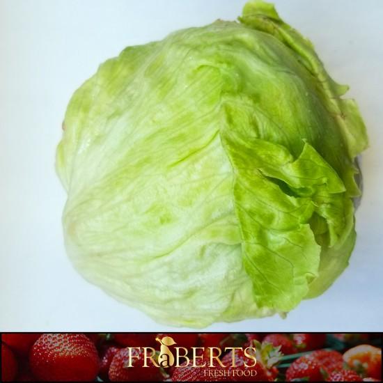 Lettuce - Head / Iceburg