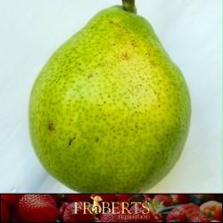 Pears - Bartlett (1lb)